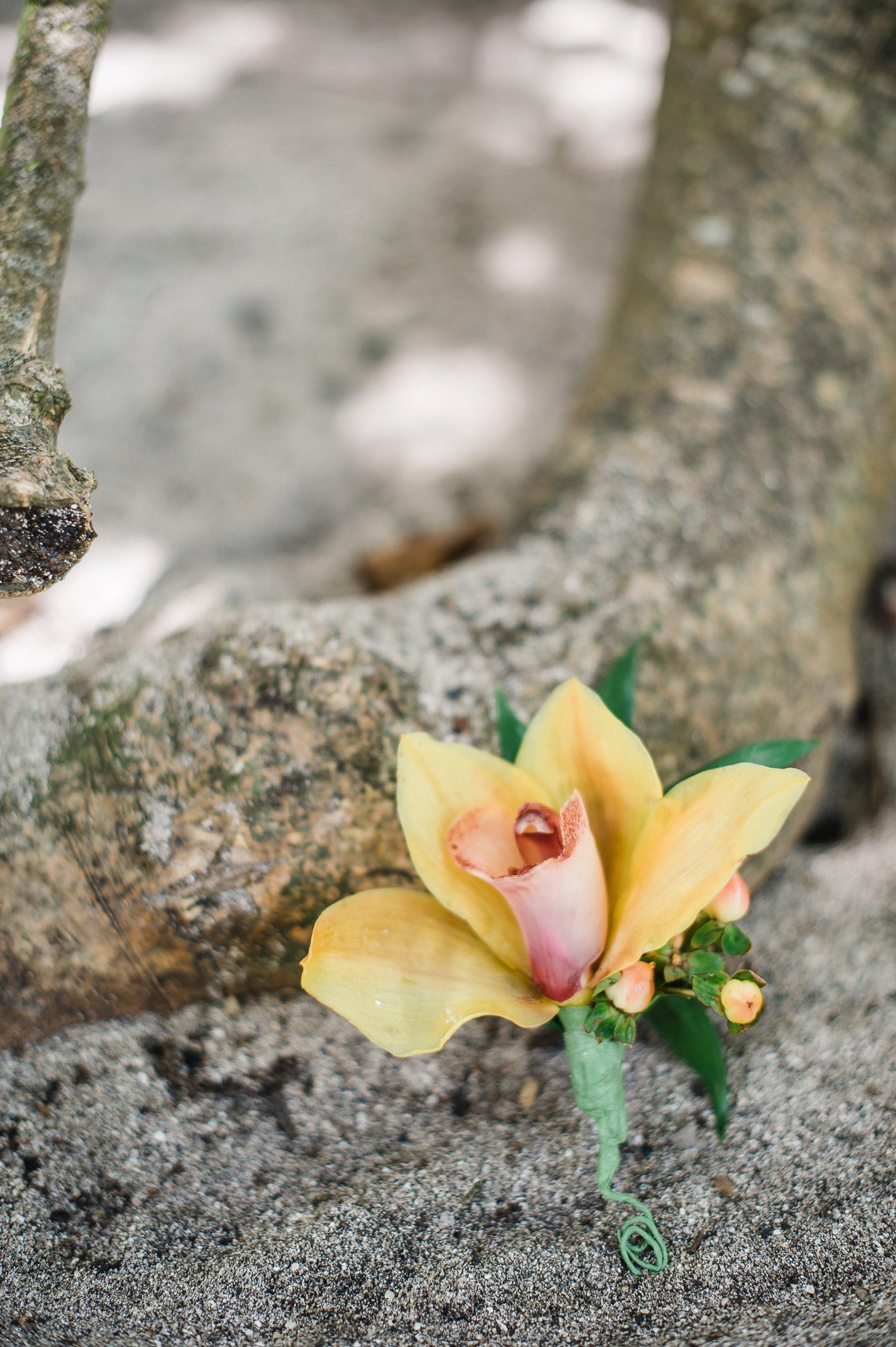 Yellow/orange cymbidium orchid boutonniere for destination wedding.