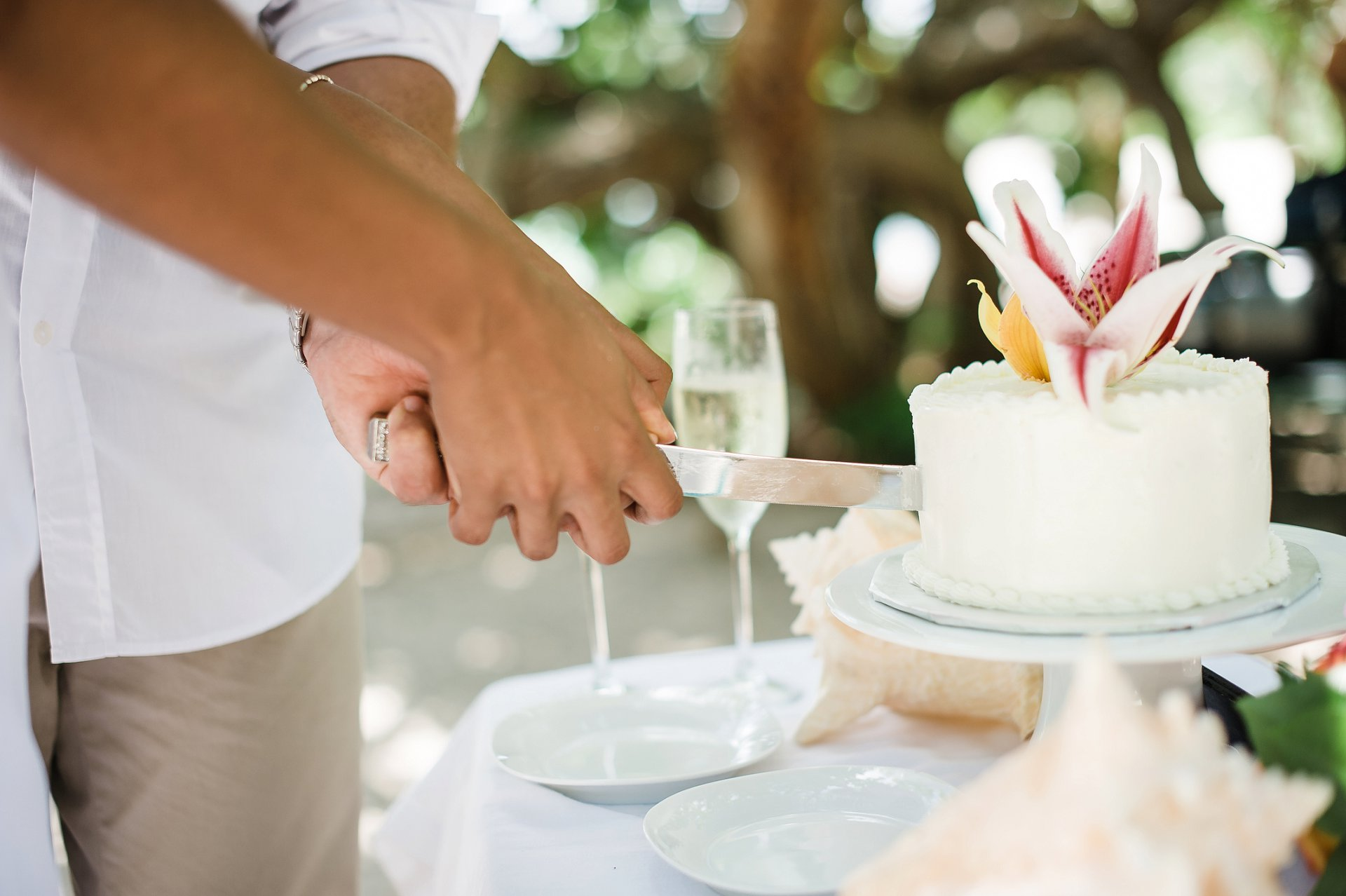 Cutting small wedding cake at elopement wedding.