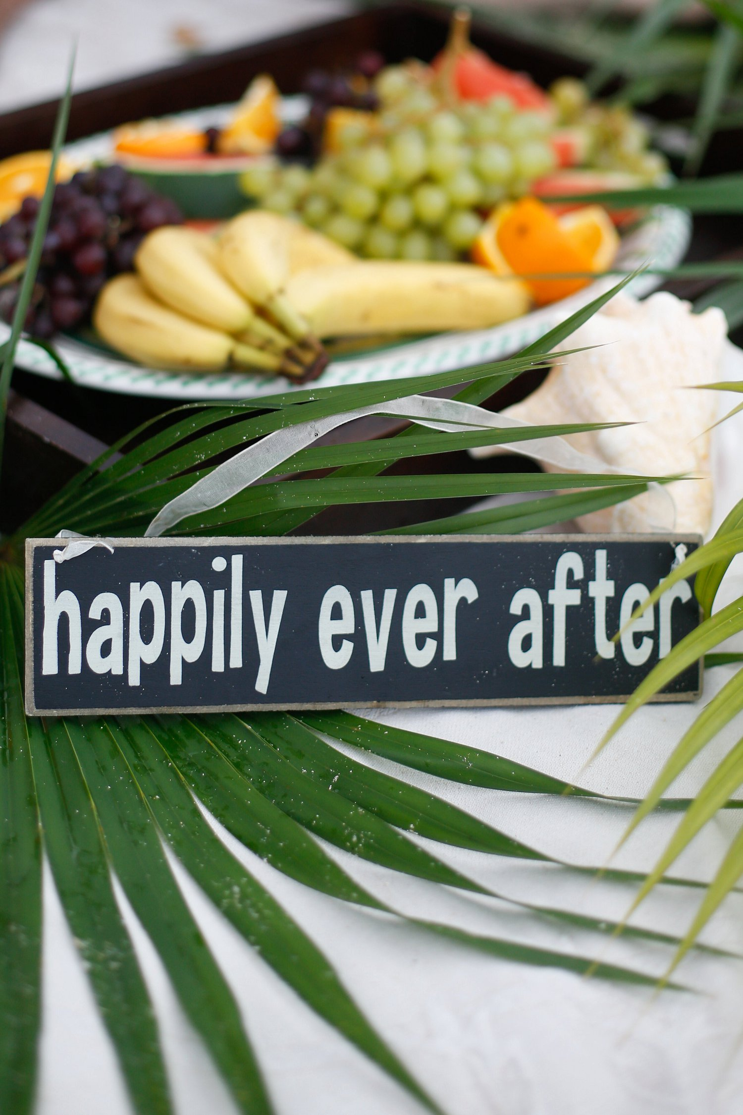 Happily Ever After wedding sign.
